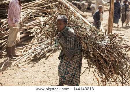 OROMIA, ETHIOPIA-NOVEMBER 6, 2015:Unidentified girl carries a heavy load in a village in Oromia, Ethiopia