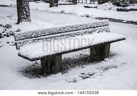 A snowy bench in a winter park