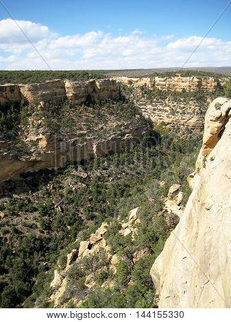 Cliff canyon (vertical) in Mesa Verde National Park (Colorado, USA)