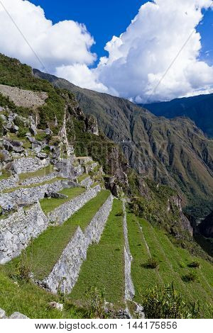 Farming Terraces In Machu Pichu