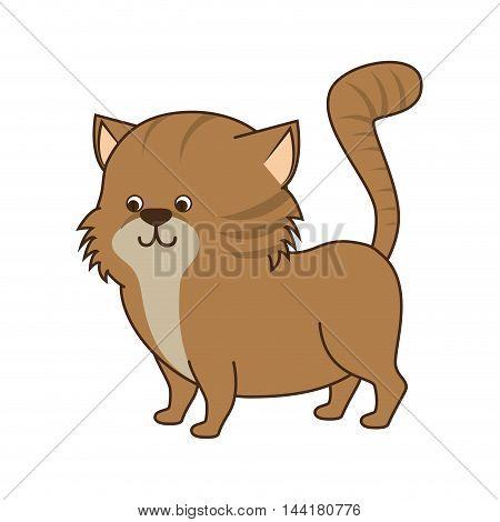cat cartoon animal feline mascot pet domestic vector illustration