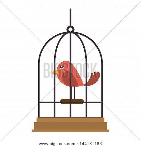 bird cartoon parrot animal cage element pet mascot vector illustration