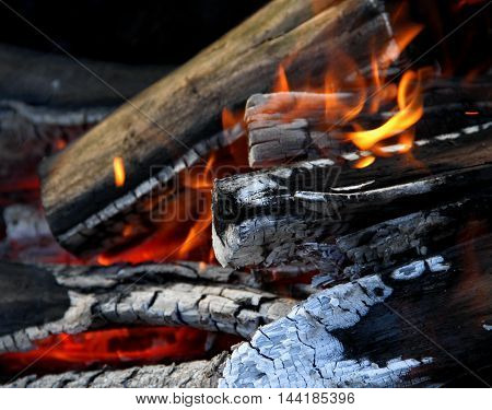 Firewood burning in flame macro shot stock photo