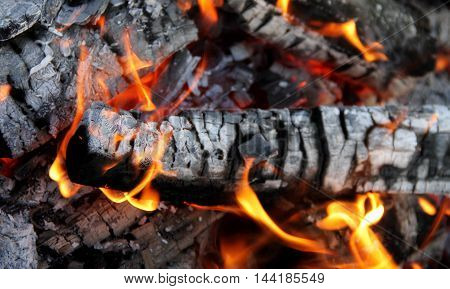 Fire Dances on Burning Logs Close Up Stock Photo