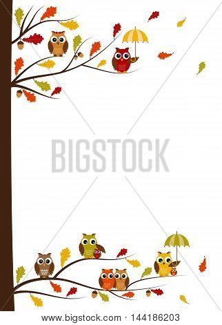 Fall owls card template with white space for your text