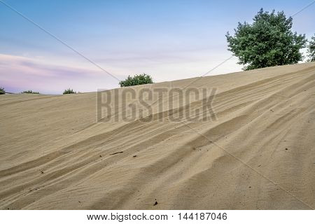 off road vehicle tracks on sand dune - North Sand Hills, only place in Colorado to legally ride on sand dunes