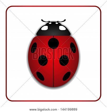 Ladybug small icon. Red lady bug sign isolated on white background. 3d volume design. Cute colorful ladybird. Insect cartoon beetle. Symbol of nature spring or summer. Vector illustartion