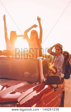 Best road trip ever. Group of young cheerful people enjoying their road trip while sitting in pick-up truck together