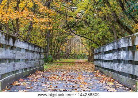 A bike path bridge on the Little Miami Scenic River Trail richly adorned in the colors of autumn Southwestern Ohio USA