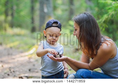Mother and her little son discovering nature and looking on pine-tree cones.