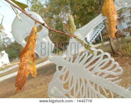Skeleton In Leaves