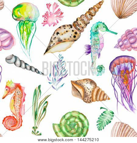 A seamless pattern with the multicolored seahorses, jellyfish, shells and seaweed (algae), painted in a watercolor on a white background