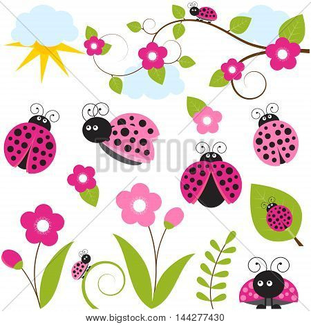 Vector ladybug set with flowers and leaves