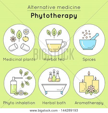 Vector Set Of Phytotherapy Linear Icons. Medicinal Plants, Herbal Tea, Spices, Phyto Inhalation, Her