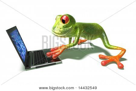 Frog with a laptop poster