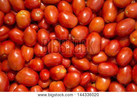 photo of very fresh tomatoes.  Stock Photo
