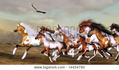 Wildhorses herd