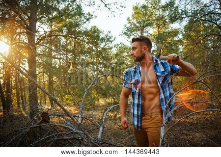 Lumberjack with an ax. Woodcutter in unbuttoned shirt in the coniferous forest. Felling trees. Logging. Manual labor. Brutal man. Sunset