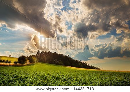 Nice view of the field with a path trees and clouds irradiated by the setting sun. Moravian landscape Boskovice.