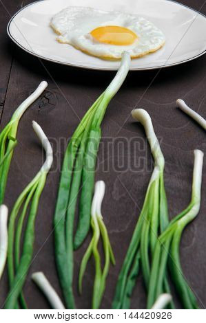 Egg , chives green onio and white plate look like sperm competition, Spermatozoons floating to ovule.Selective focus egg on focus chive defosed .Wooden background.vertical shot