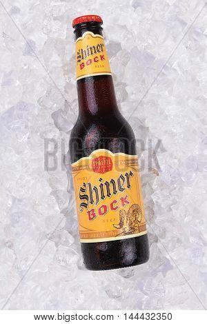 Shiner Bock On Ice