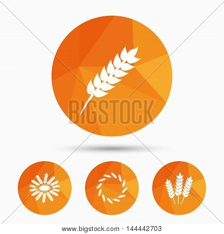 Agricultural icons. Gluten free or No gluten signs. Wreath of Wheat corn symbol. Triangular low poly buttons with shadow. Vector