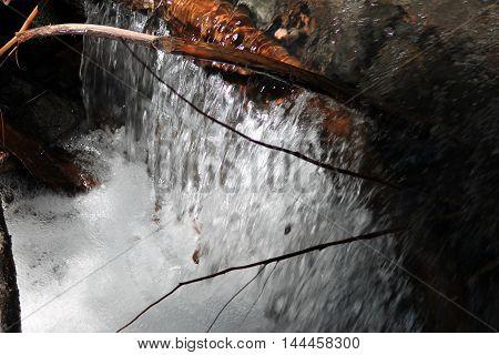 Flowing Pamelia Stream in Mt. Jefferson Wilderness