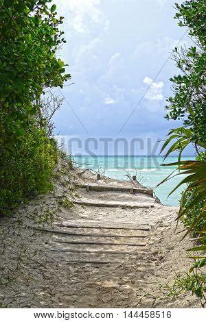 Beautiful view of Gold Rock Beach, Bahamas.