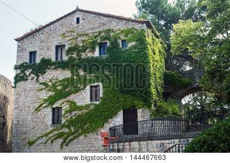Wall house, braided with ivy. Shooting in Gerona Spain