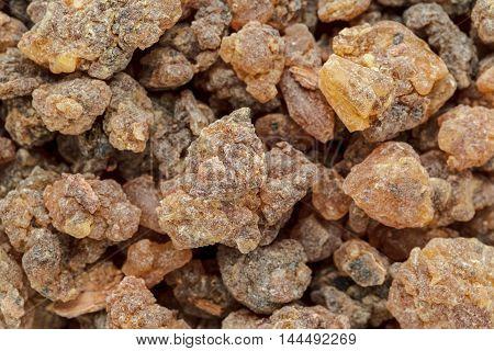 Organic Loban (Styrax benzoin). Macro close up background texture. Top view.