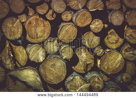 Wooden texture with pile of tree trunks - Beautiful background with a pile of wood logs ready to be chopped perfect details on the tree rings and curves.