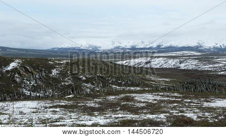 Snow dusts the landscape of Denali National Park