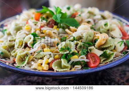 vegan pasta salad with soya and quinoa on plate