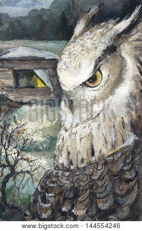 Watercolor Owl Nature Wildlife Hand Drawn Illustration