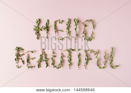 words hello beautiful made with green branches on pink background. flat lay top view