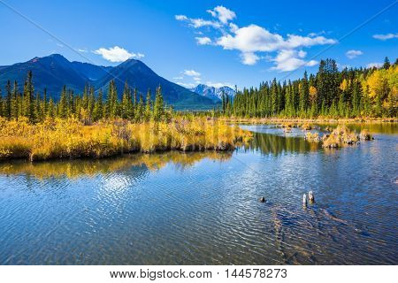 Concept of active tourism and ecotourism. Beautiful lakes Vermilion in Banff National Park. Canadian province of Alberta, the Rocky Mountains. Magnificent sunny day