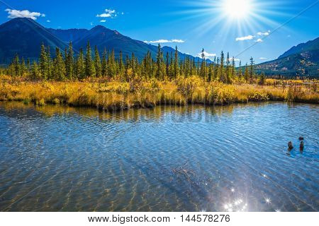 Magnificent sunset on lakes Vermilion in mountains National park Banff. The Rocky Mountains, Canada. Concept of active tourism