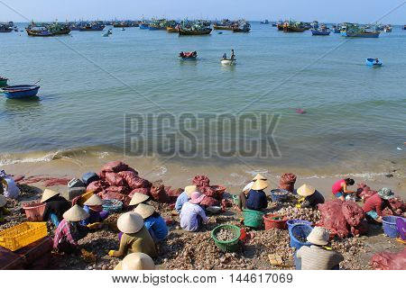 Vietnam people wait for fishing boats  from the sae to clean on the coast