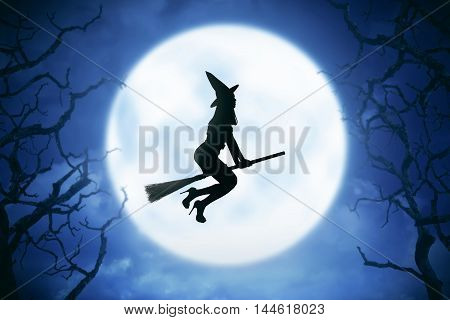 Silhouette Of Witch Woman Riding Magic Broom