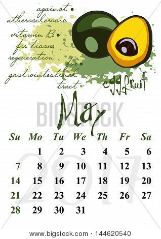 Calendar design grid with useful properties of fruits and dates of spring month May 2017. Eggfruit. Vector illustration