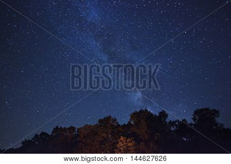 The beautiful night sky with muck of stars and the forest on foreground