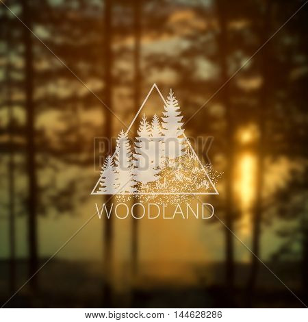 Hipster triangle logo with forest trees on blurry forest and lack background