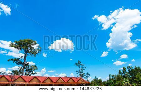 Red House Roof With Tree And Blue Sky