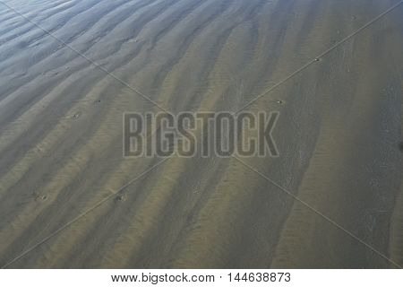 Ripples found in the sand causing texture