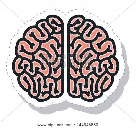 brain storm isolated icon vector illustration design