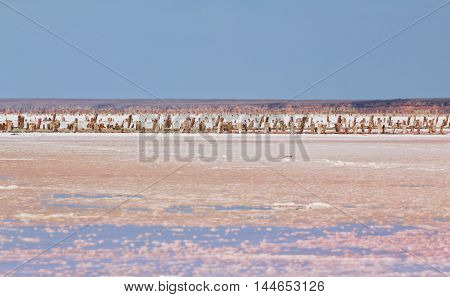 Sivash salt pink lake near Azov Sea, colored by microalgae Dunaliella salina, famous for its antioxidant properties and enriching water of the lake by beta-carotene. Salt, brine and mud of pink lake are used in medicine - dermatology, rheumatism, arthriti
