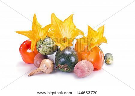 Many different vegetables are on a white background