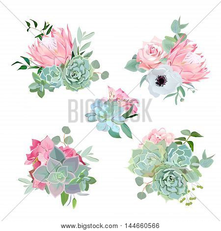 Stylish small bouquets of succulents protea rose anemone echeveria hydrangea green plants. Flower mix in modern style. All elements are isolated and editable.