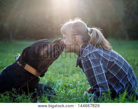 Huge Rottweiler dog kisses a young girl. Evening the sun's rays park