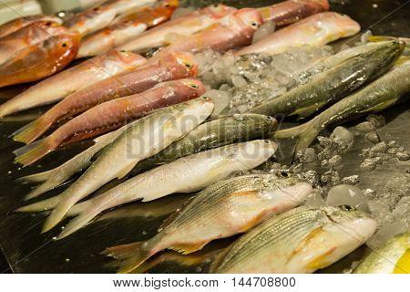 Fish at Wanhua fish market in Taipei